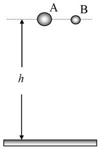 11630 b thema a lik 1